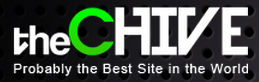 thechive font