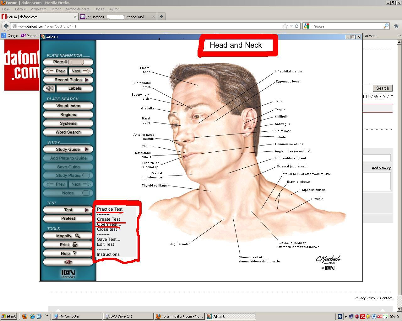 netter human anatomy problem