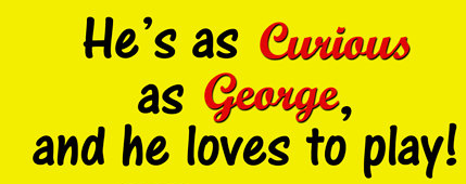 Curious George fonts?