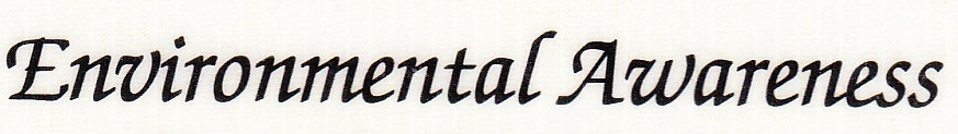 CAN YOU HELP ME PLEASE :) What is the name of this font ?