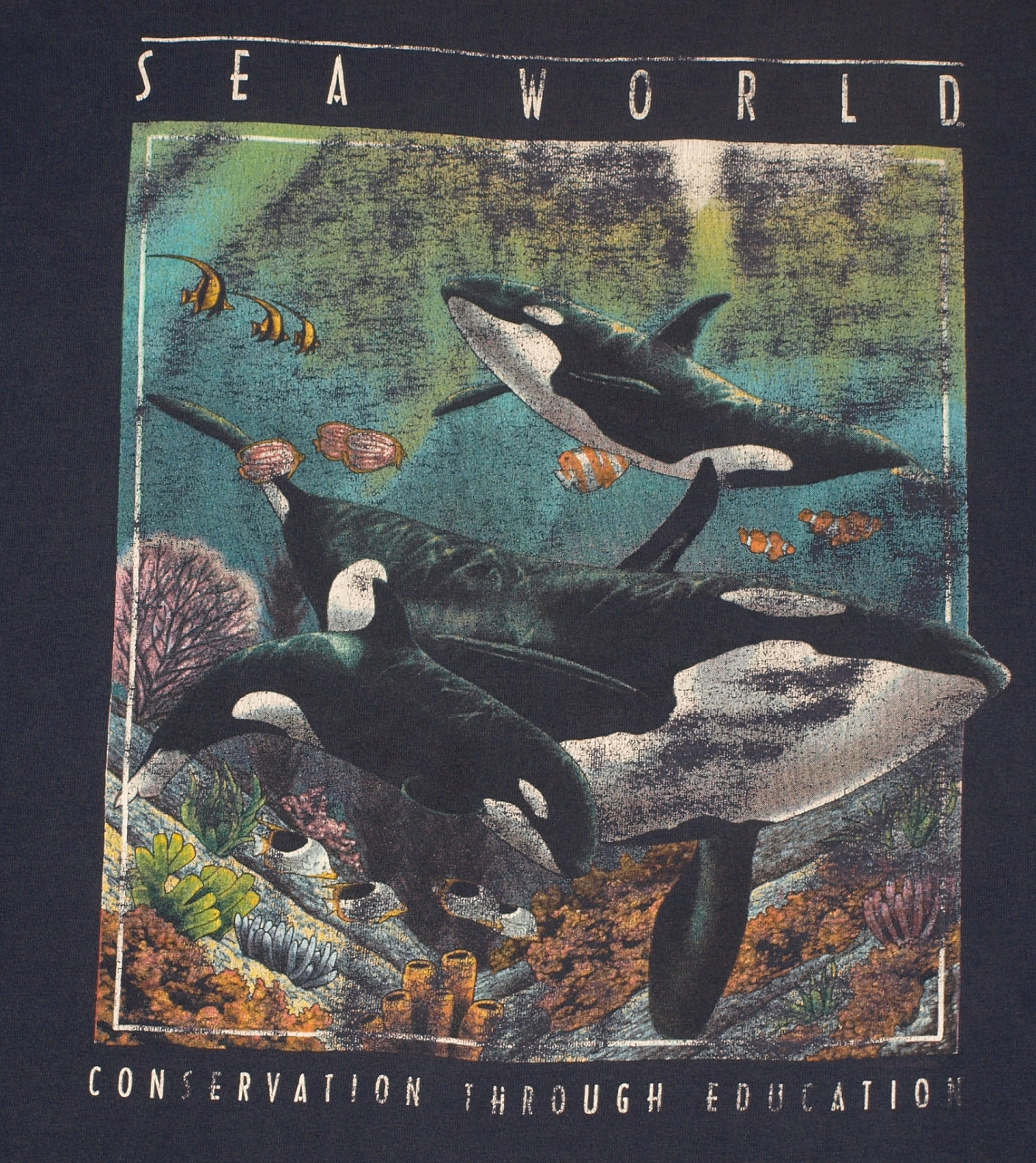 SEA WORLD FONT