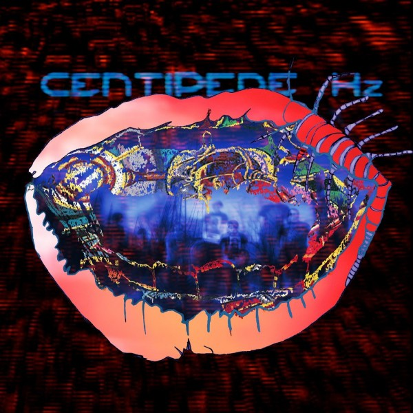 Animal Collective Centipede