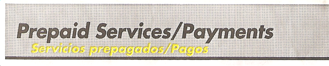 """Prepaid Services/Payments"" Font"
