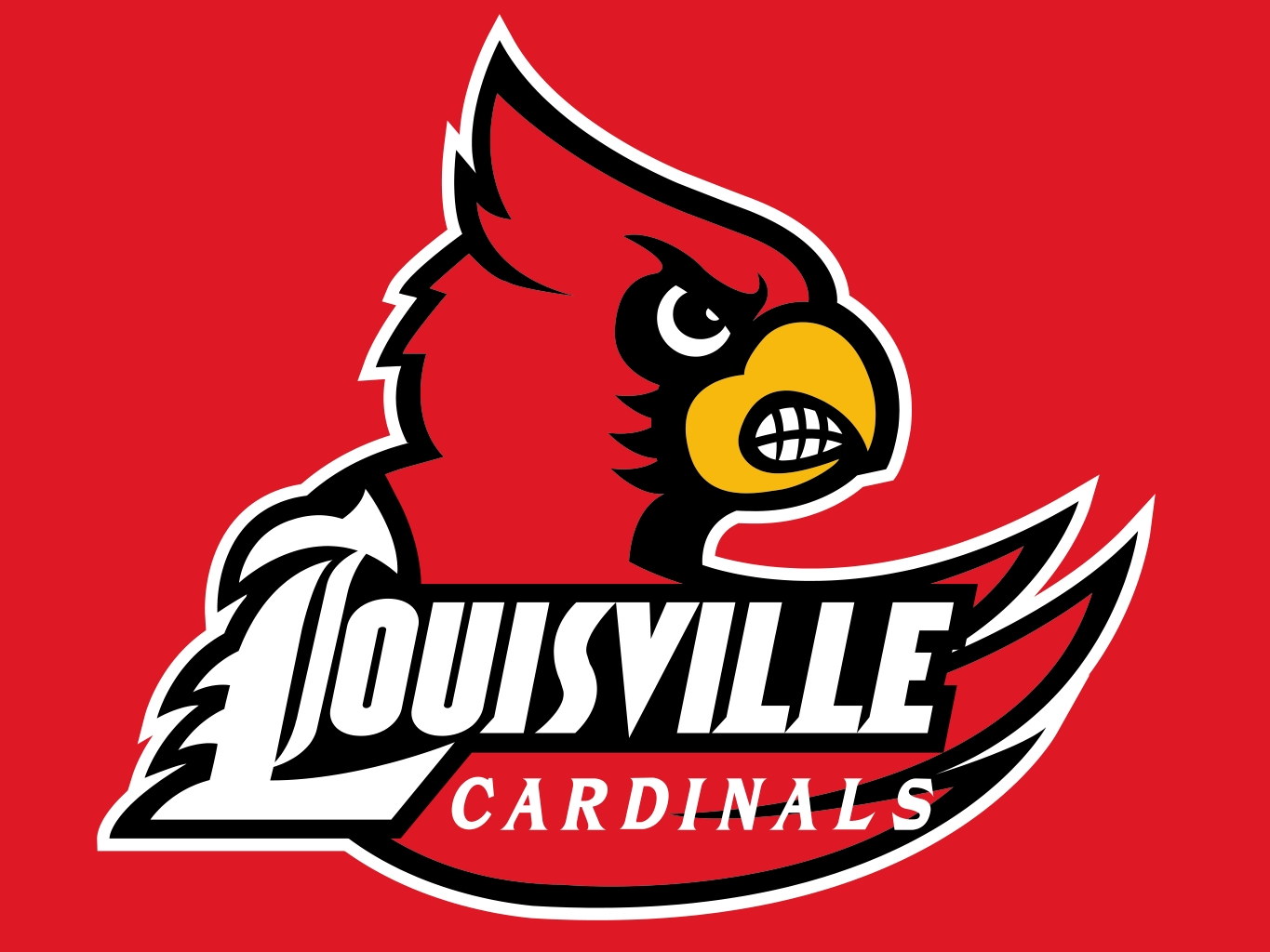 Image result for louisville cardinals