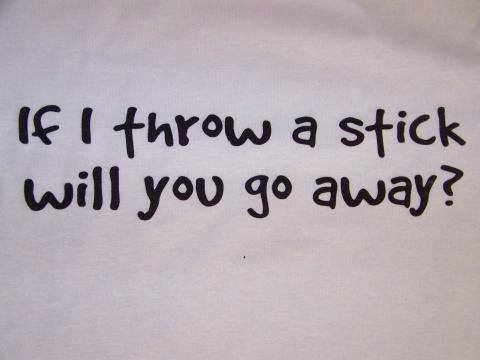 If I throw A stick