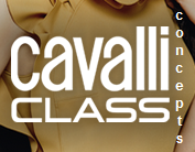 Please help me identify the font used for the word CLASS