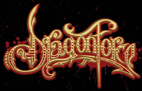 anyone knows what Dragonforce font is?