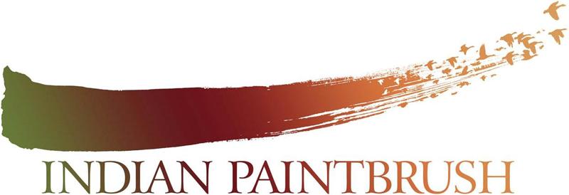 indian paintbrush logo font? - forum | dafont