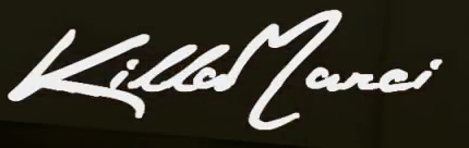 this font?