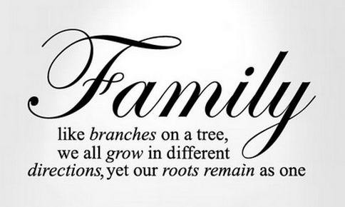 the word family in different fonts www pixshark com images galleries with a bite