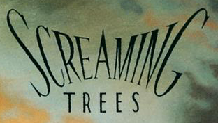Please help to Identify this font?