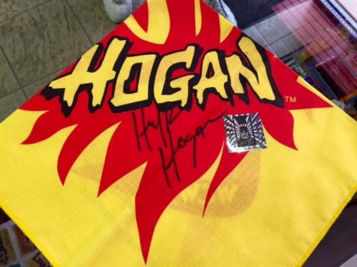 Hogan WCW logo - forum   dafont com