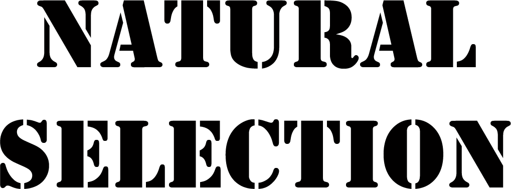 natural selection font forum