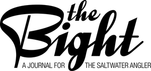 The Bight font