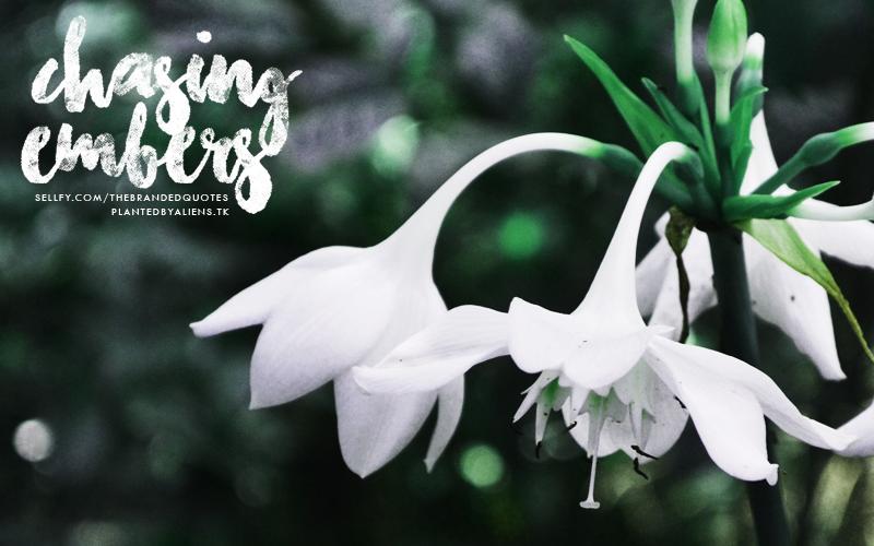 Chasing Embers Font | dafont com