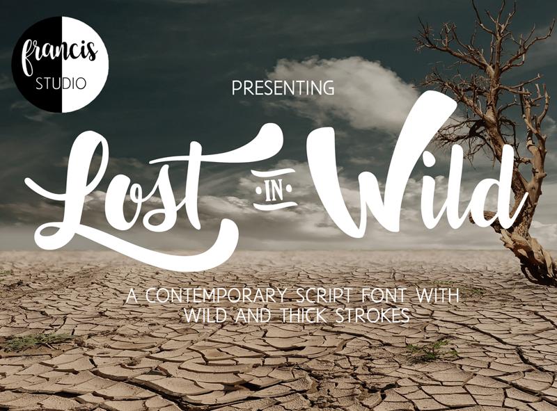 Lost In Wild Font