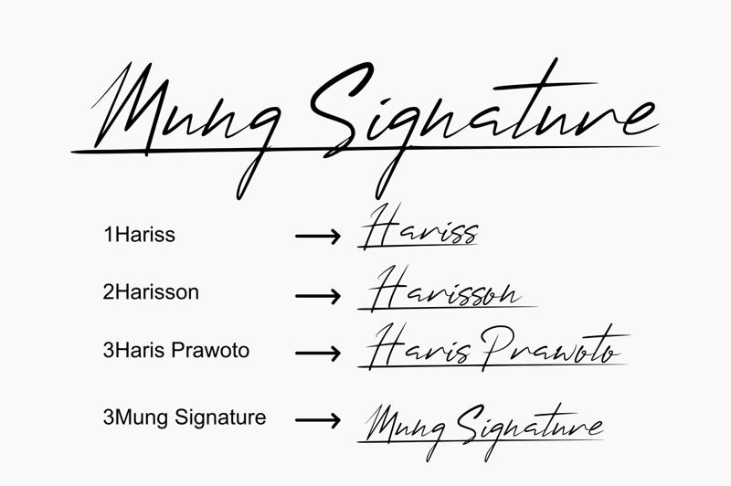Mung Signature Font   dafont com