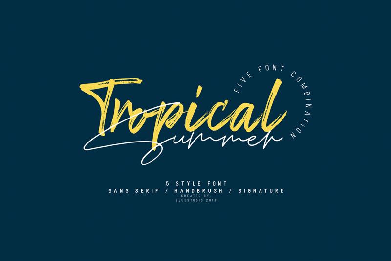 Tropical Summer Signature Font   dafont com