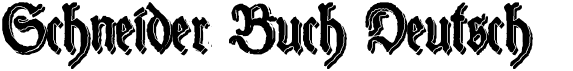 Schneider Buch Deutsch
